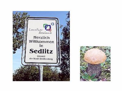 Willkommen in Sedlitz
